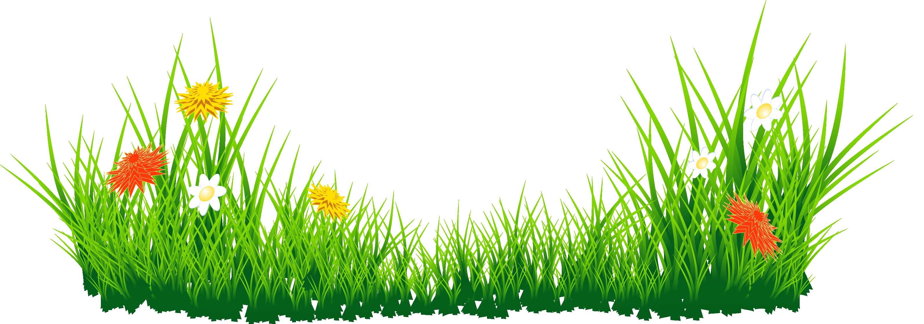 Grass HD PNG - 119869