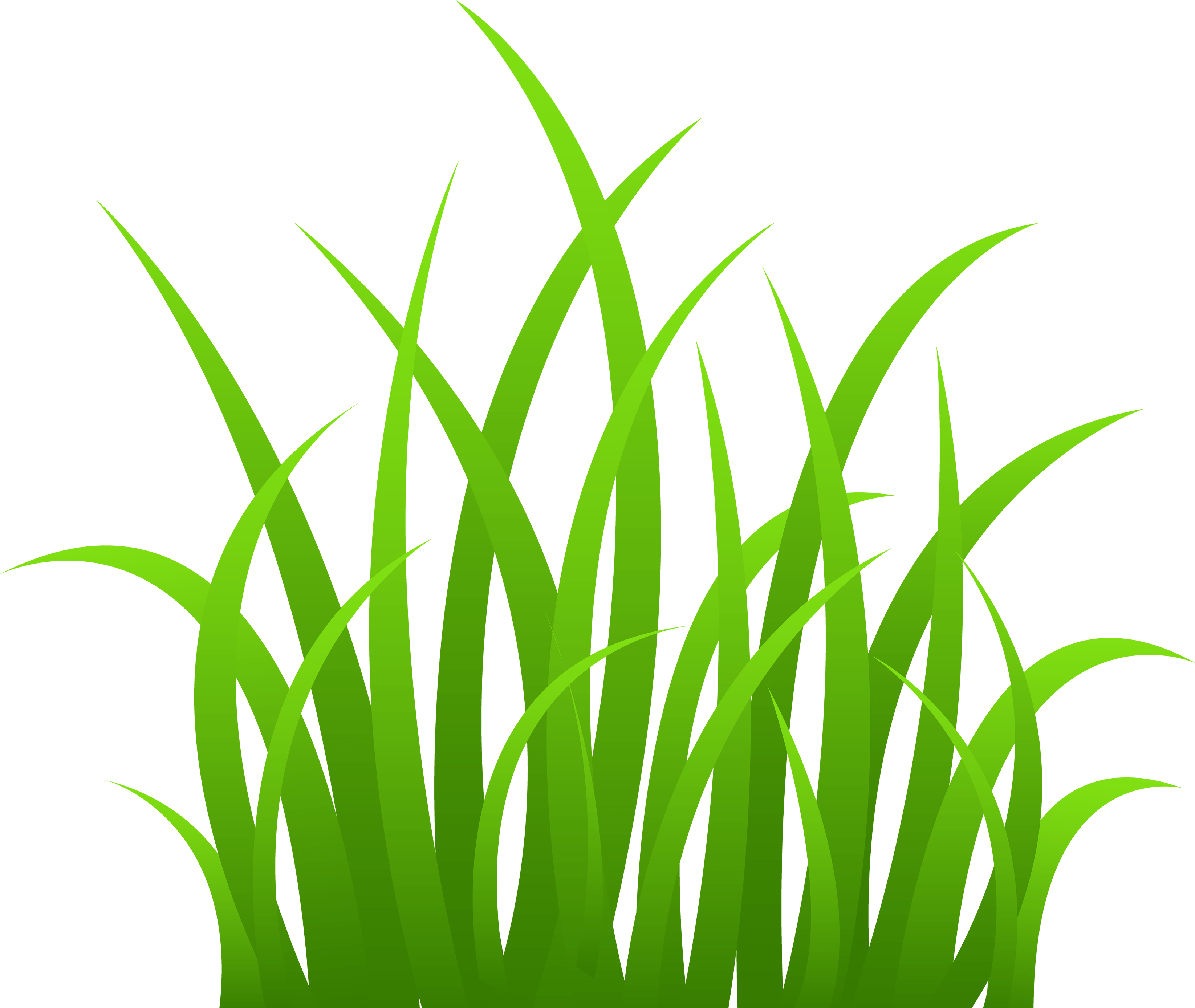 Grass HD PNG - 119876