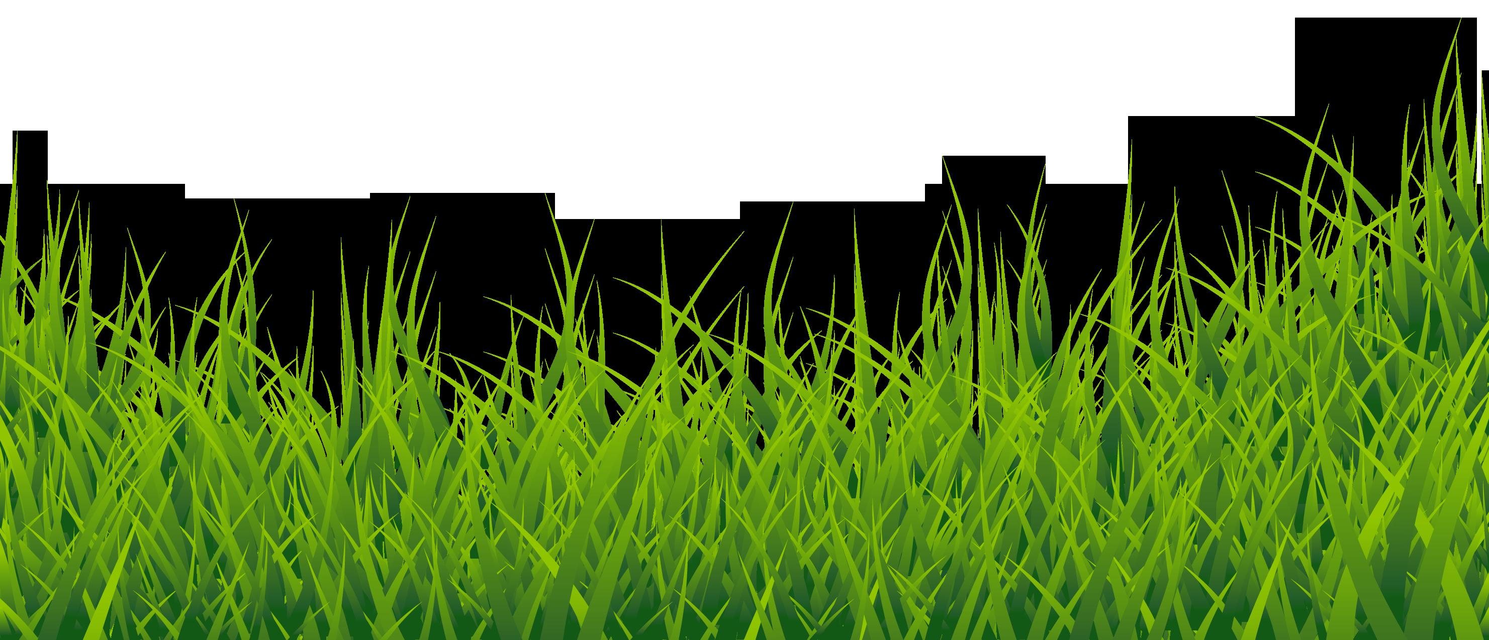 Pin Wallpaper Clipart Grass #8 - Grass HD PNG