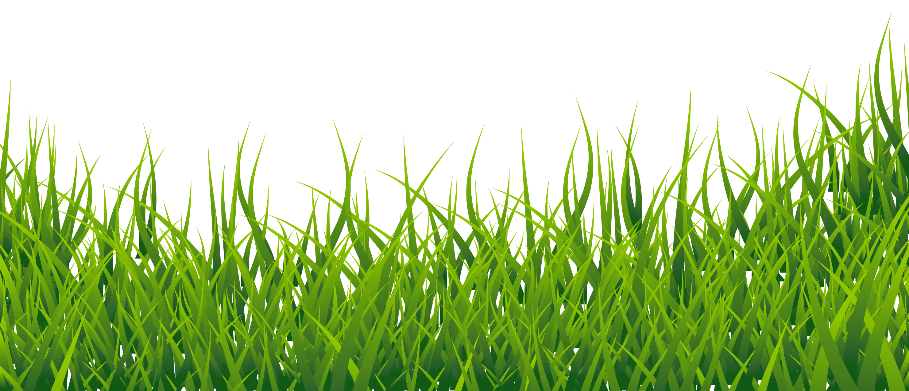 Grass HD PNG - 119870