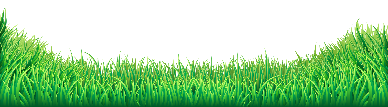 Grass HD PNG - 119867