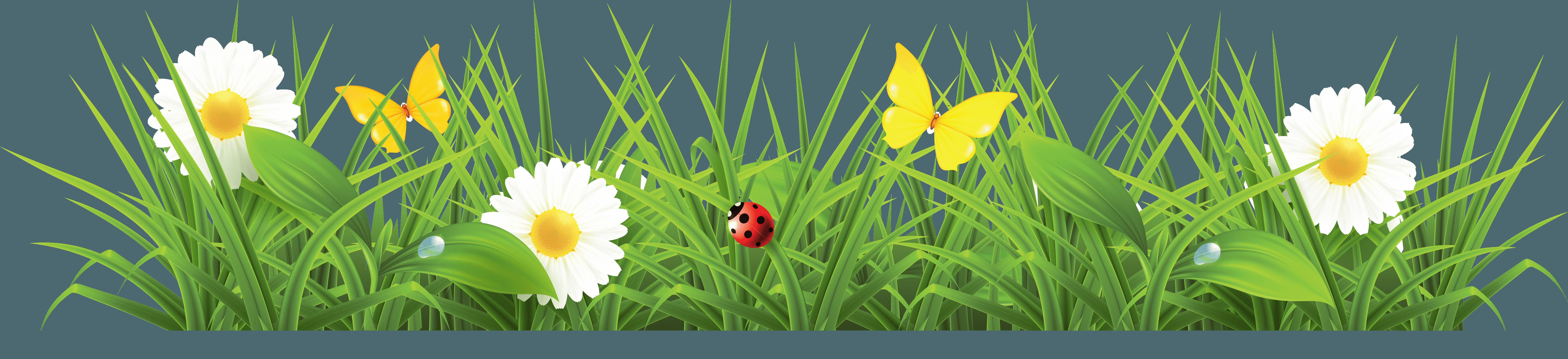 Download PNG image - Grass Pn