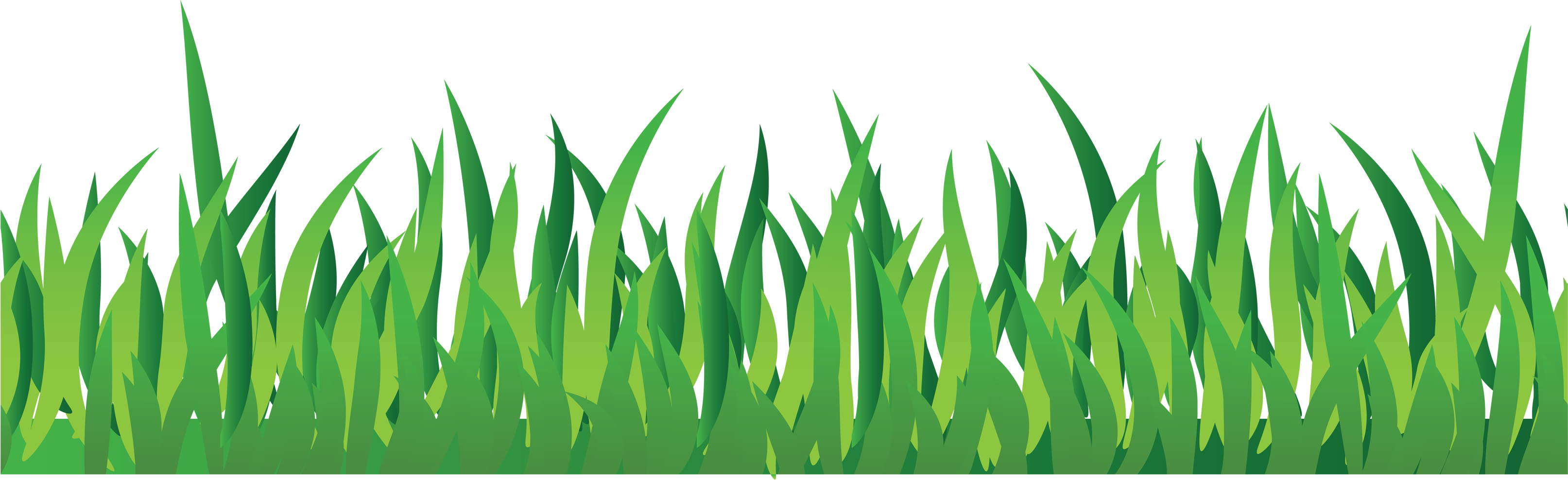 grass png image, green grass PNG picture - Grass PNG