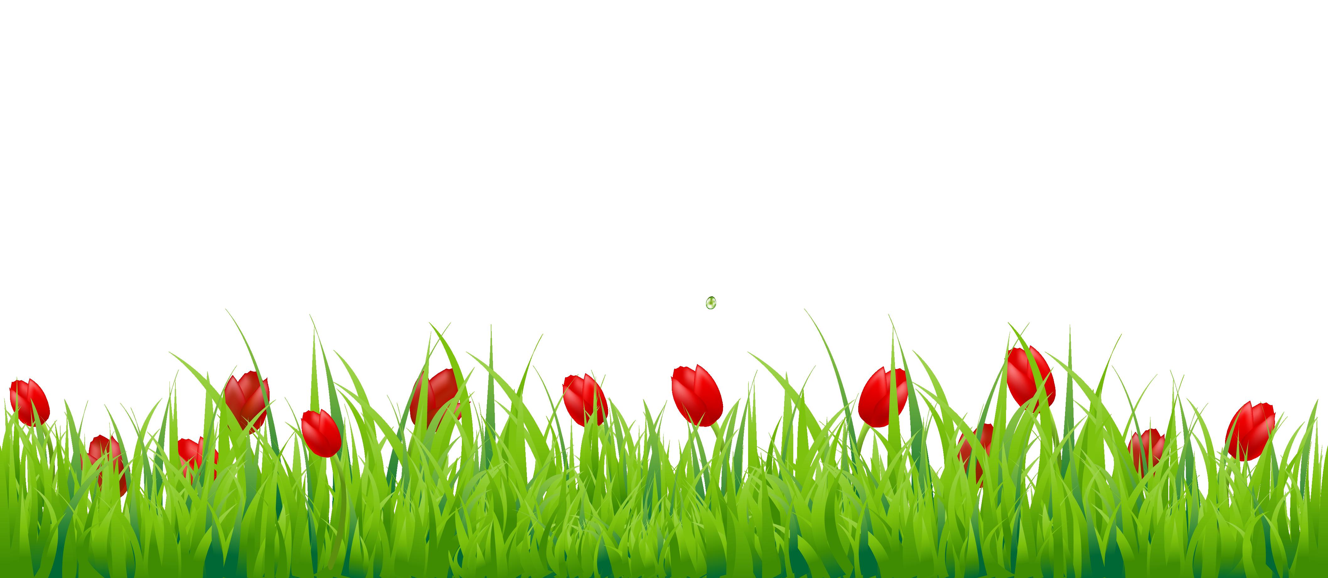 Grass PNG Transparent Image