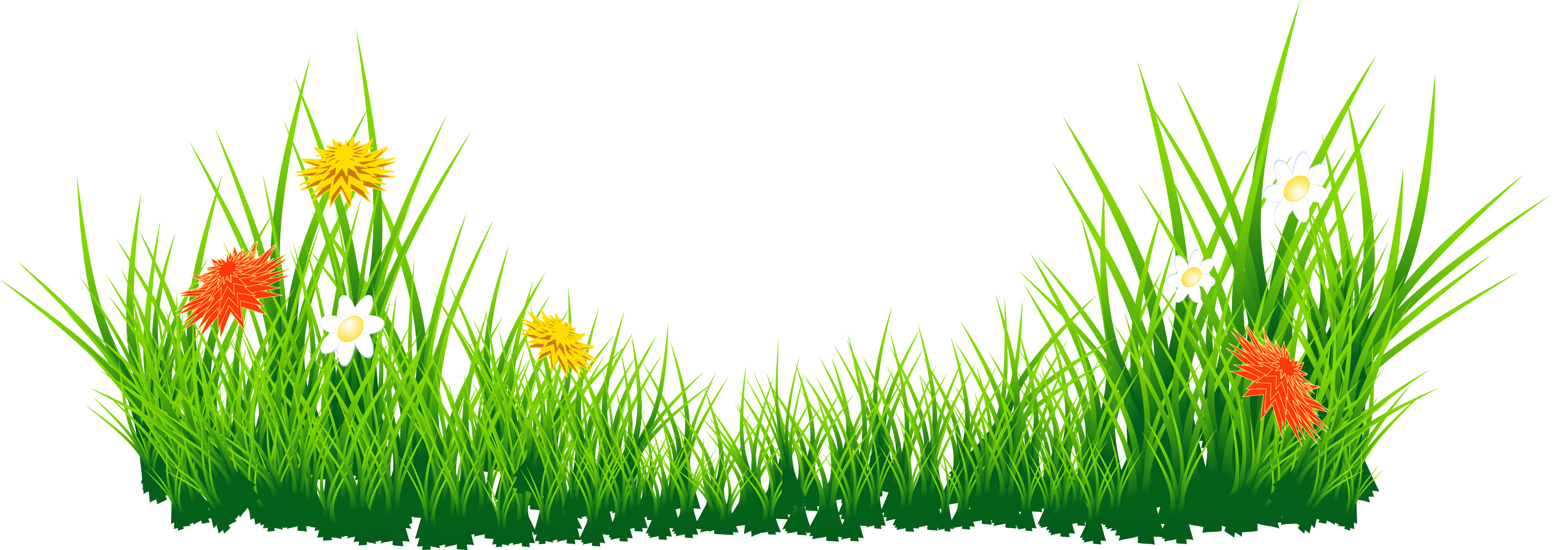 Grasses PNG HD - 150636