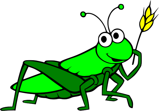 Grasshopper PNG - 28104