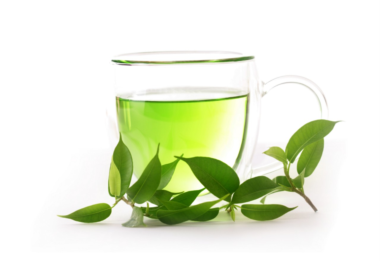 Green tea may promote healthy gums. A lower rate of gum-tissue loss and  bleeding was found in those who regularly drank green tea, according to  researchers PlusPng.com  - Green Tea PNG