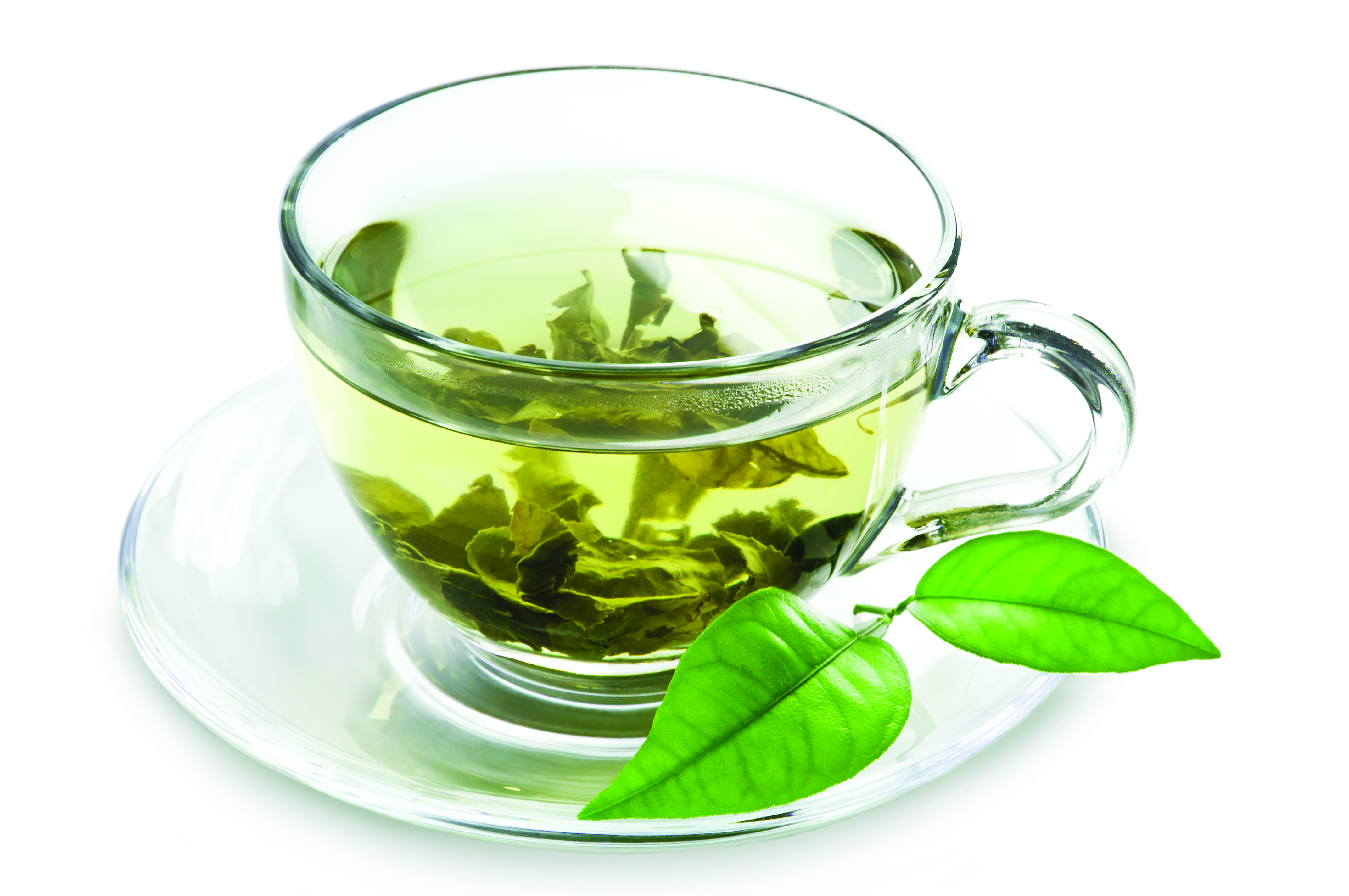 Green Tea PNG-PlusPNG.com-4288 - Green Tea PNG