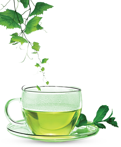 Green Tea PNG Clipart - Green Tea PNG