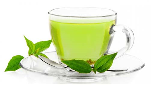 Scientists found that green tea contains the antioxidant u201cEGCGu201d (or  epigallocatechin gallate) that has the ability to PlusPng.com  - Green Tea PNG