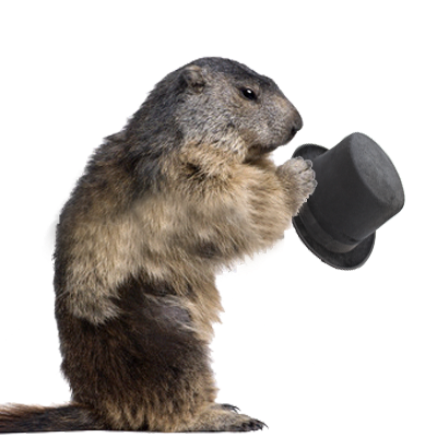 Happy Groundhog Day - Groundh