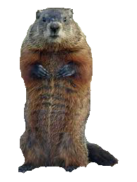 Groundhog, Cartoon, Groundhog