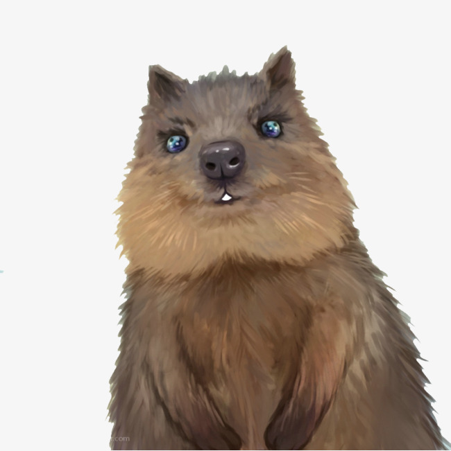 Groundhog painted, Animal, Groundhog, Lovely Free PNG Image - Groundhog PNG HD