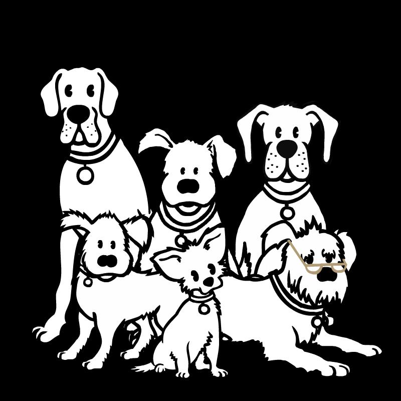 Funny Dog Treat Video
