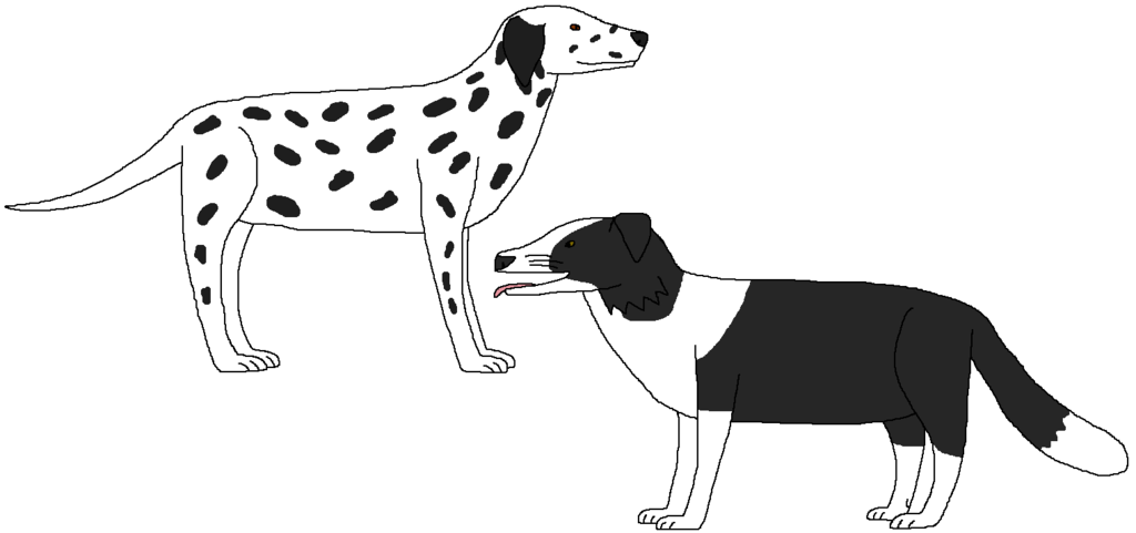 Black and White Dogs by WildandNatureFan PlusPng.com  - Group Of Dogs PNG Black And White