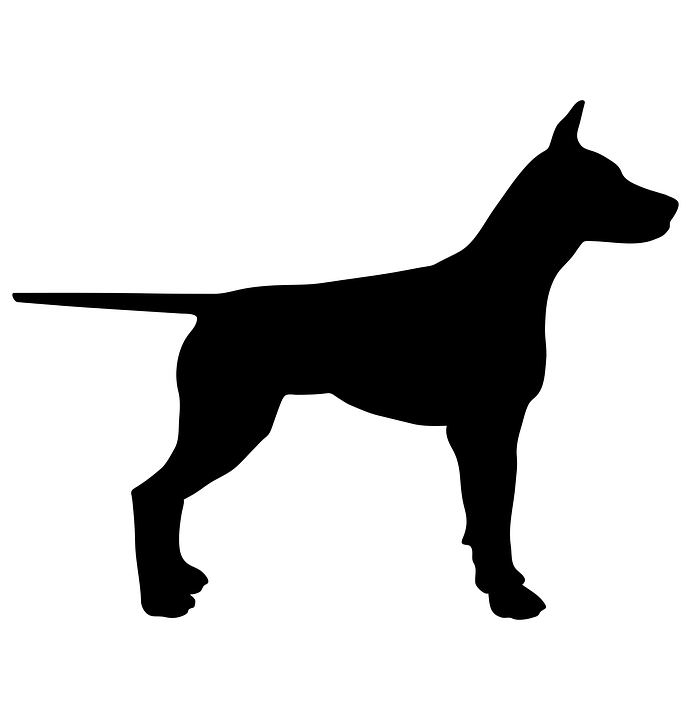 dog animal silhouette pet black design symbol - Group Of Dogs PNG Black And White