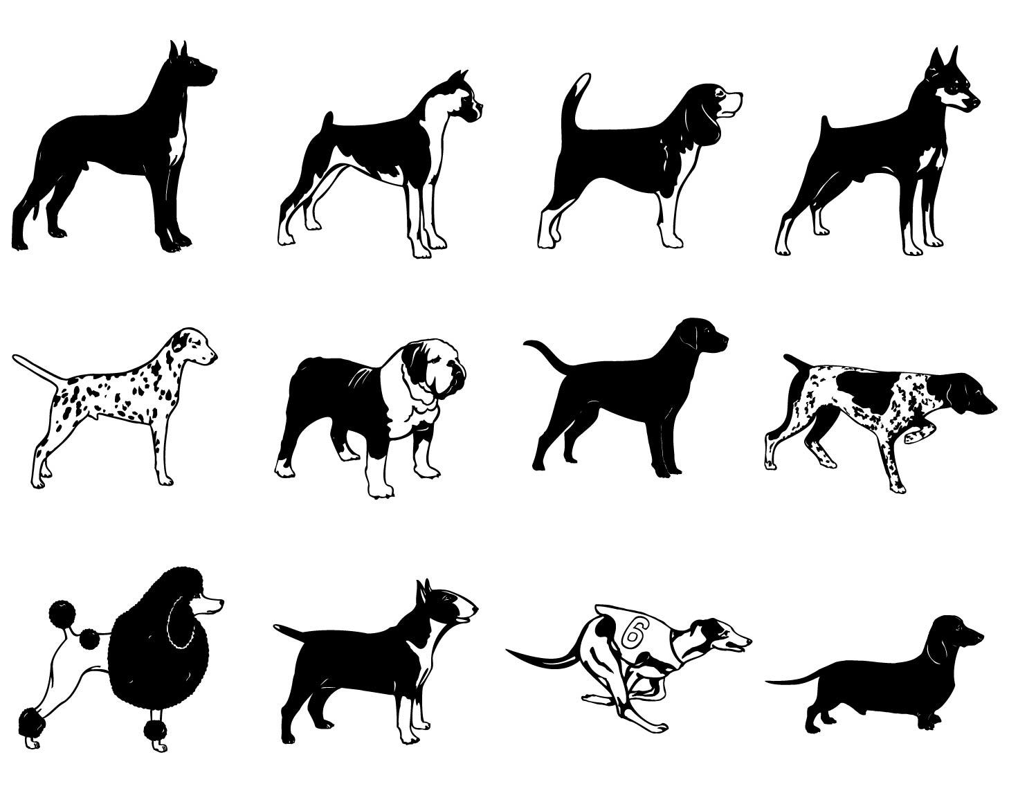image; user - Group Of Dogs PNG Black And White