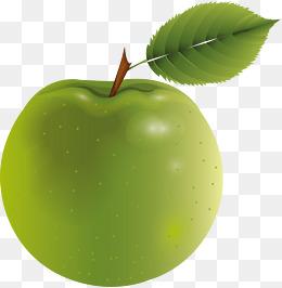 Grünen Grüne äpfel, Grüne, Cartoon, Grüne äpfel PNG Bild Und Clipart - Gruner Apfel PNG