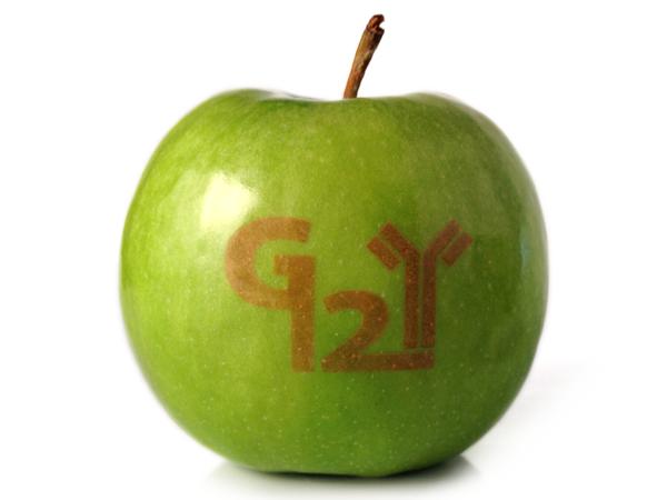 Logo Apfel grün mit Gravur - Gruner Apfel PNG