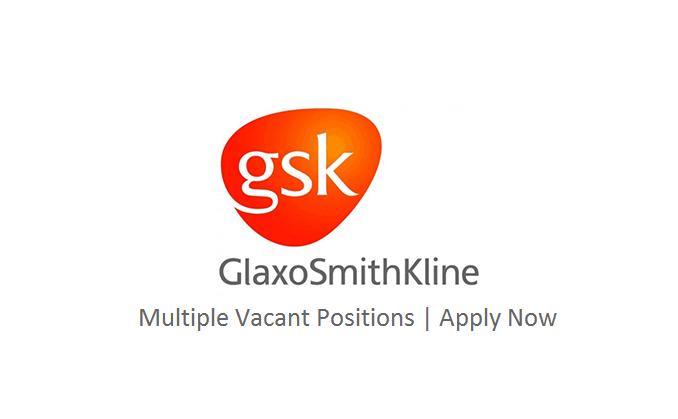 Gsk Logo PNG - 113561