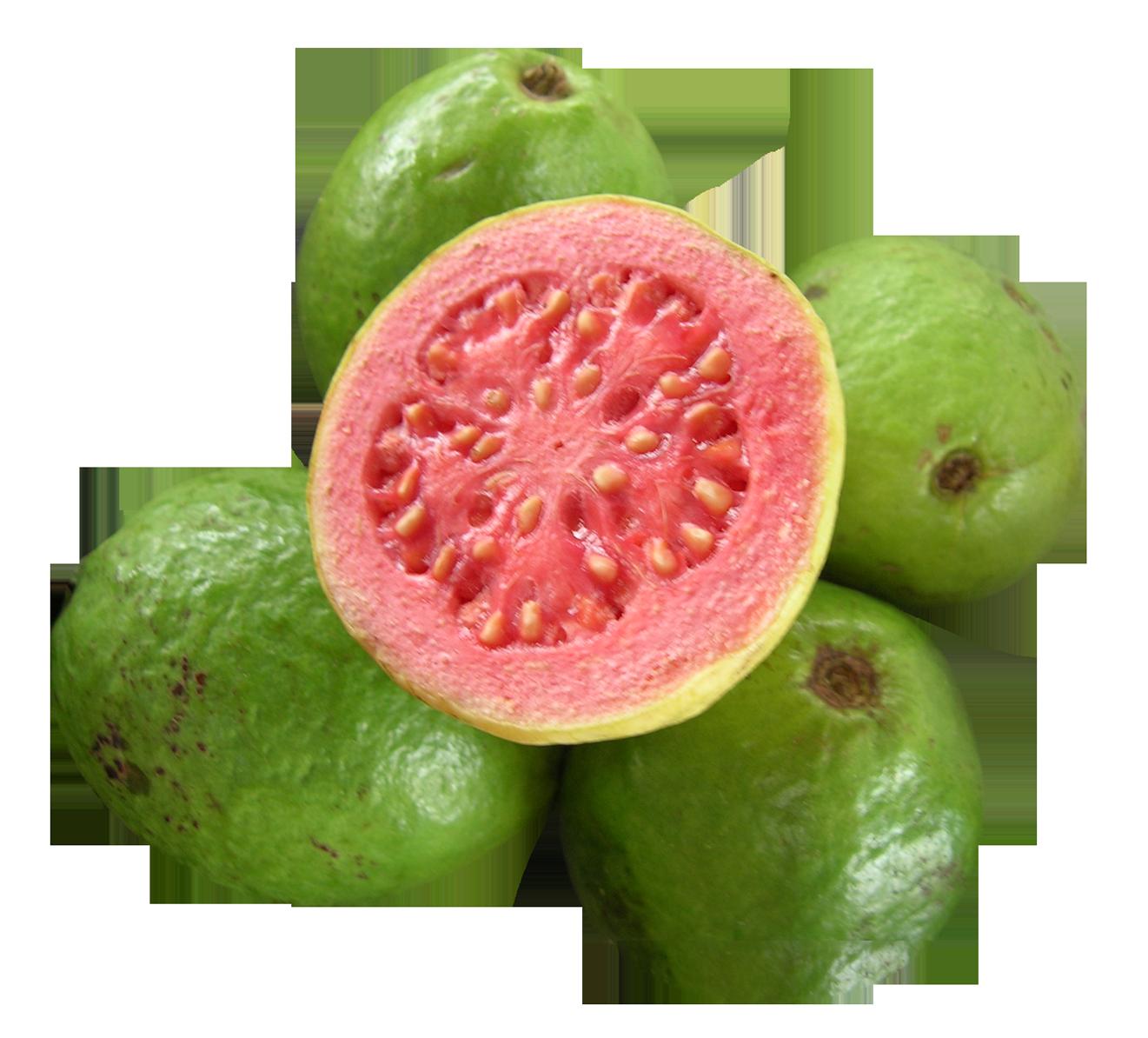 Guava PNG - 15948