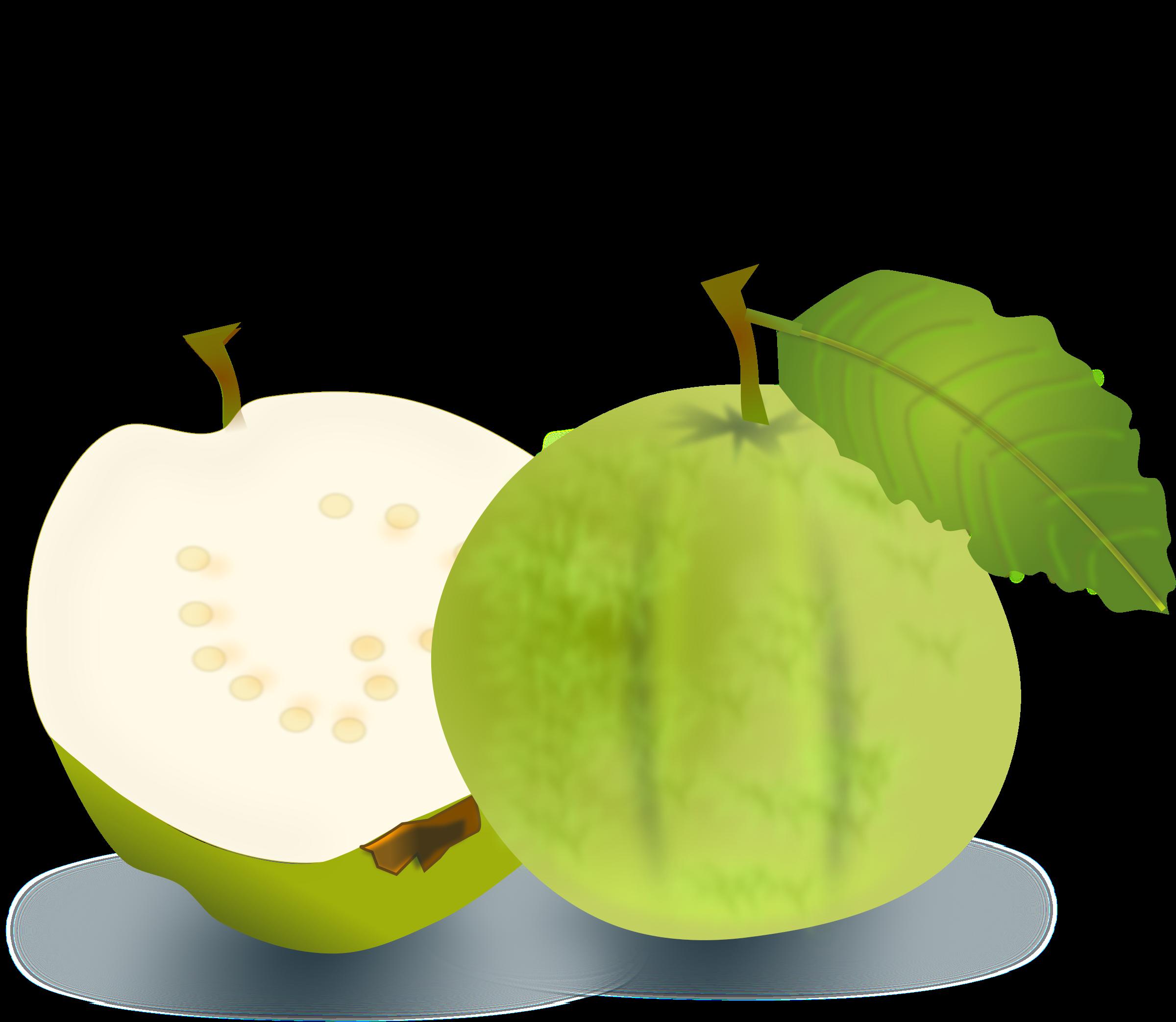 Guava PNG - 15964