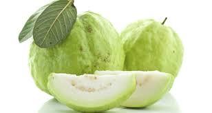 Guava PNG - 15963
