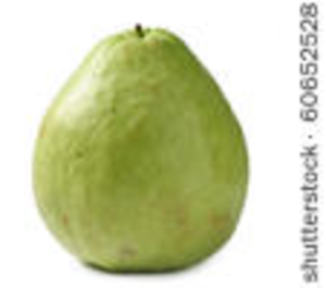 Guava PNG - 15960