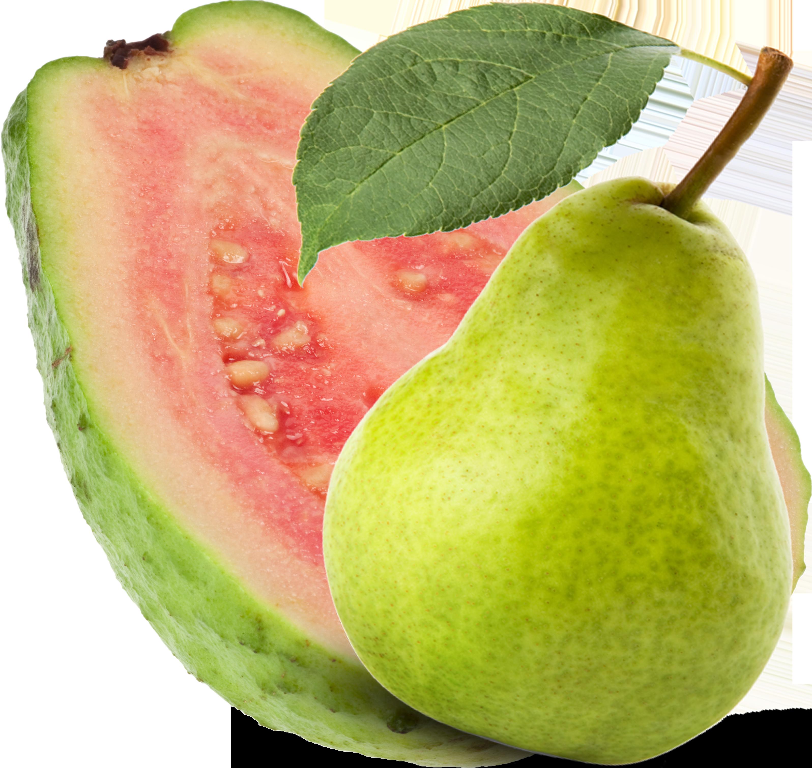 Guava PNG - 15956