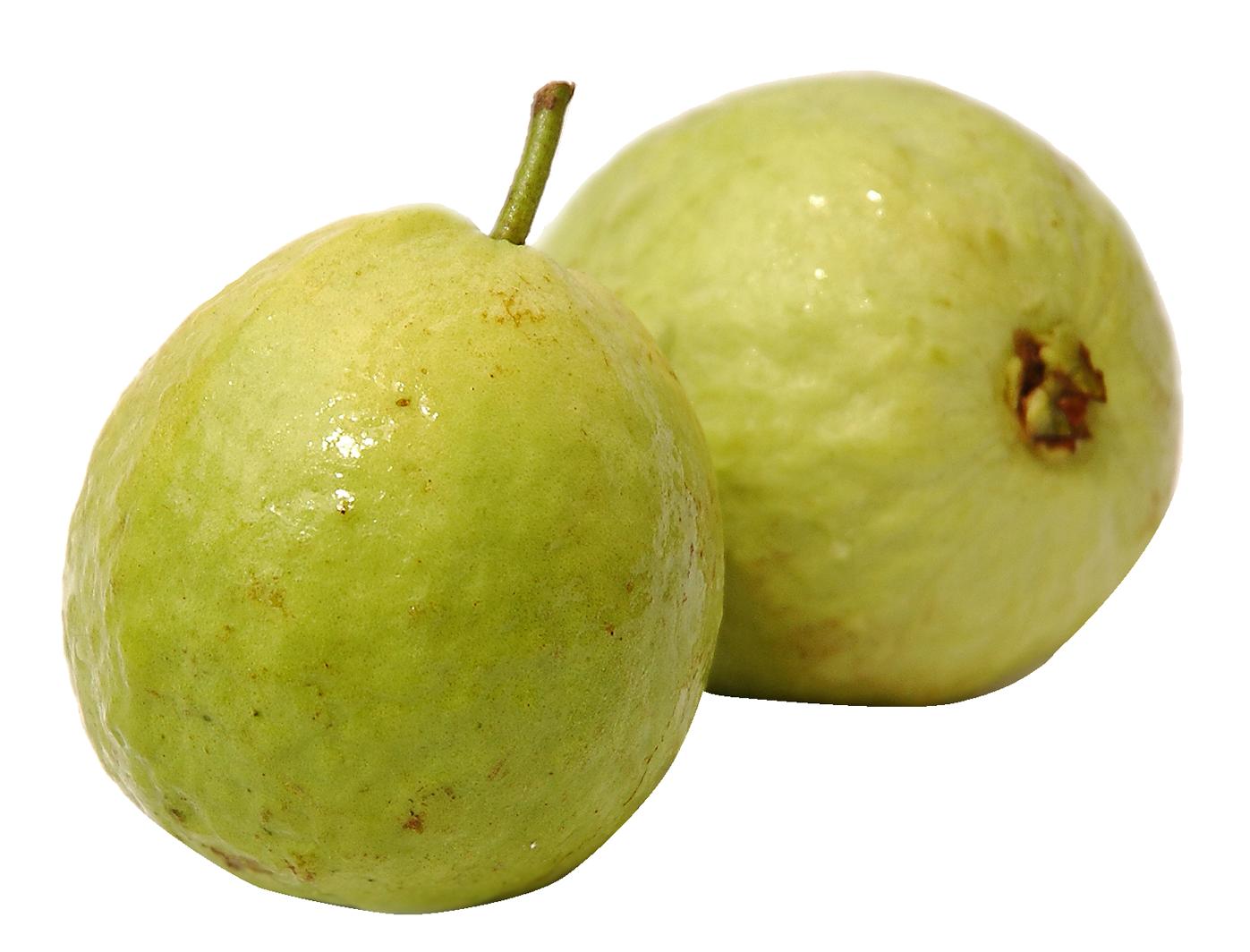 Guava PNG - 15946