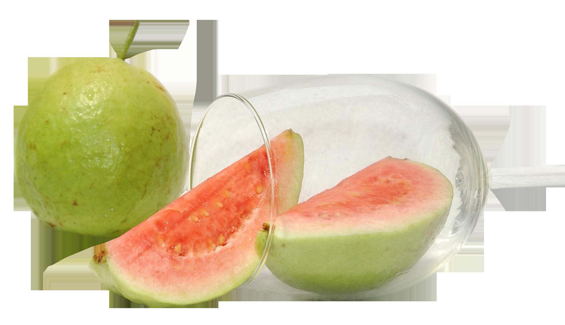 Guava PNG - 15950