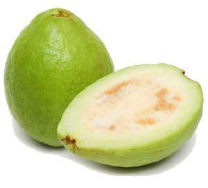 Guava PNG - 15945