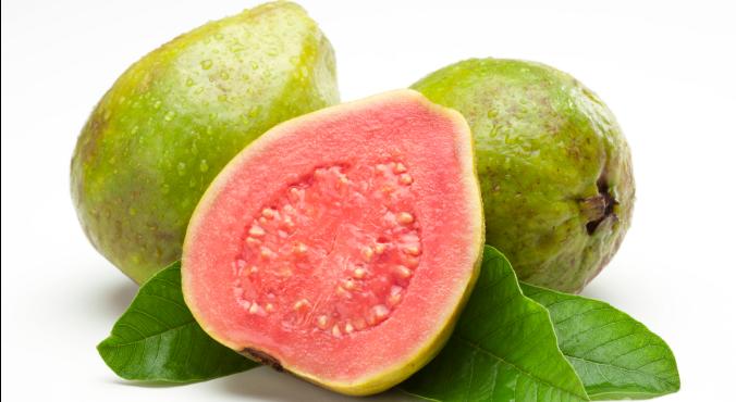 Guava PNG - 15961