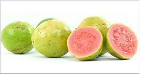 Guava PNG - 15962