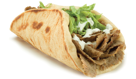 slide 1Gyro Wrap®