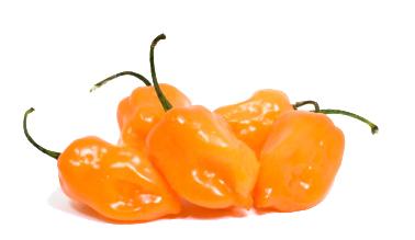 Habanero Pepper - Habanero PNG