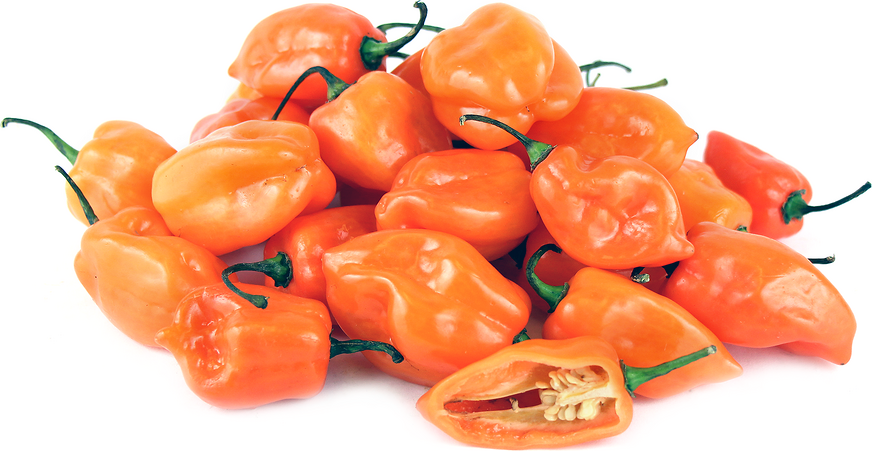 Orange Habanero Chile Peppers - Habanero PNG
