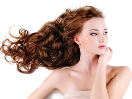 Hairdressing HD PNG - 92496
