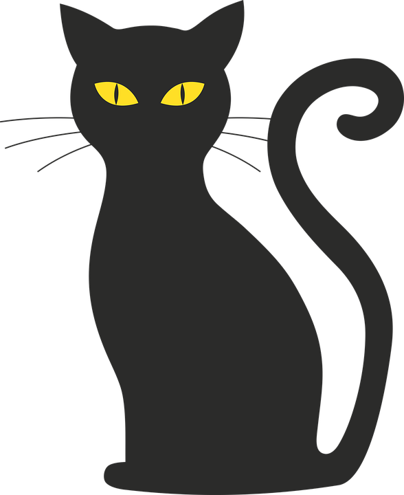 cat halloween silhouette mieze black cat black - Halloween Black Cats PNG