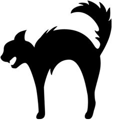 Scared Black Cat Silhouette