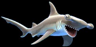 Hammerhead Shark PNG HD - 127815