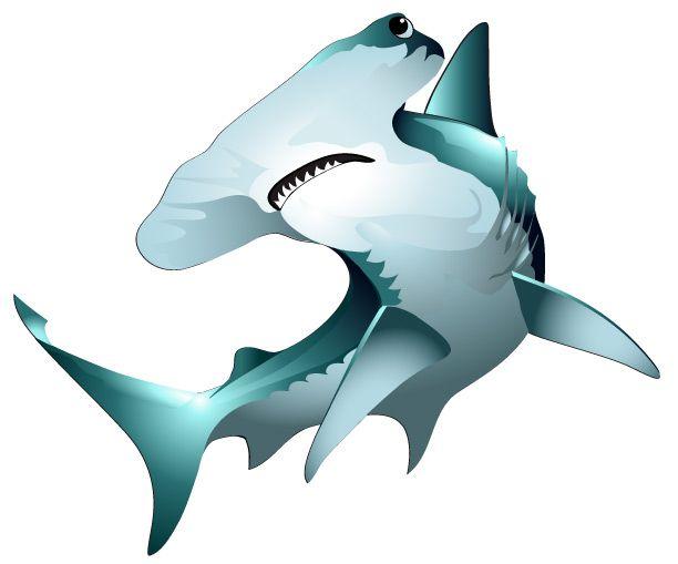 Hammerhead Shark PNG HD - 127823