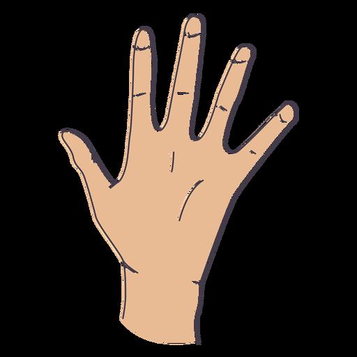 Hand gesture fingers open - Fingers PNG