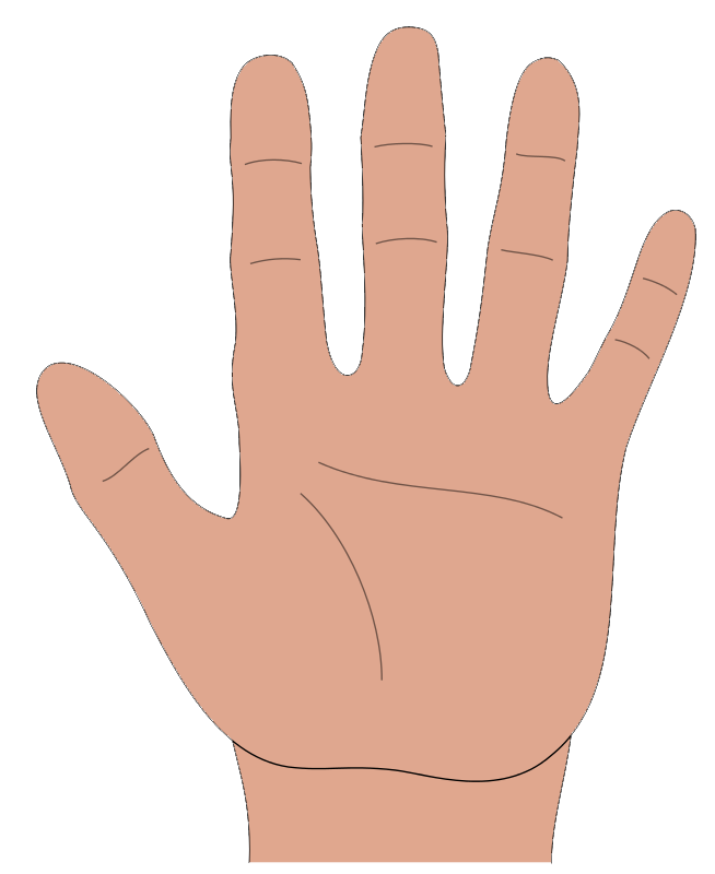 Hand clip art pictures free clipart images - Hands HD PNG