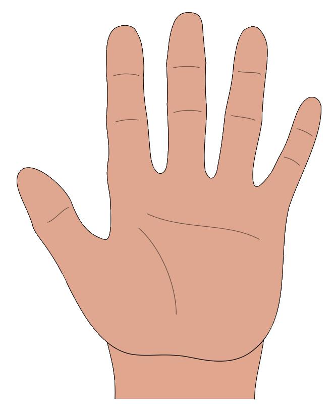Hands HD PNG - 89470