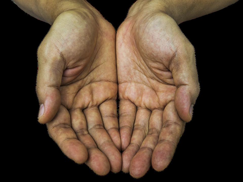 receiving hands hands receive receiving hold palm - Hands HD PNG