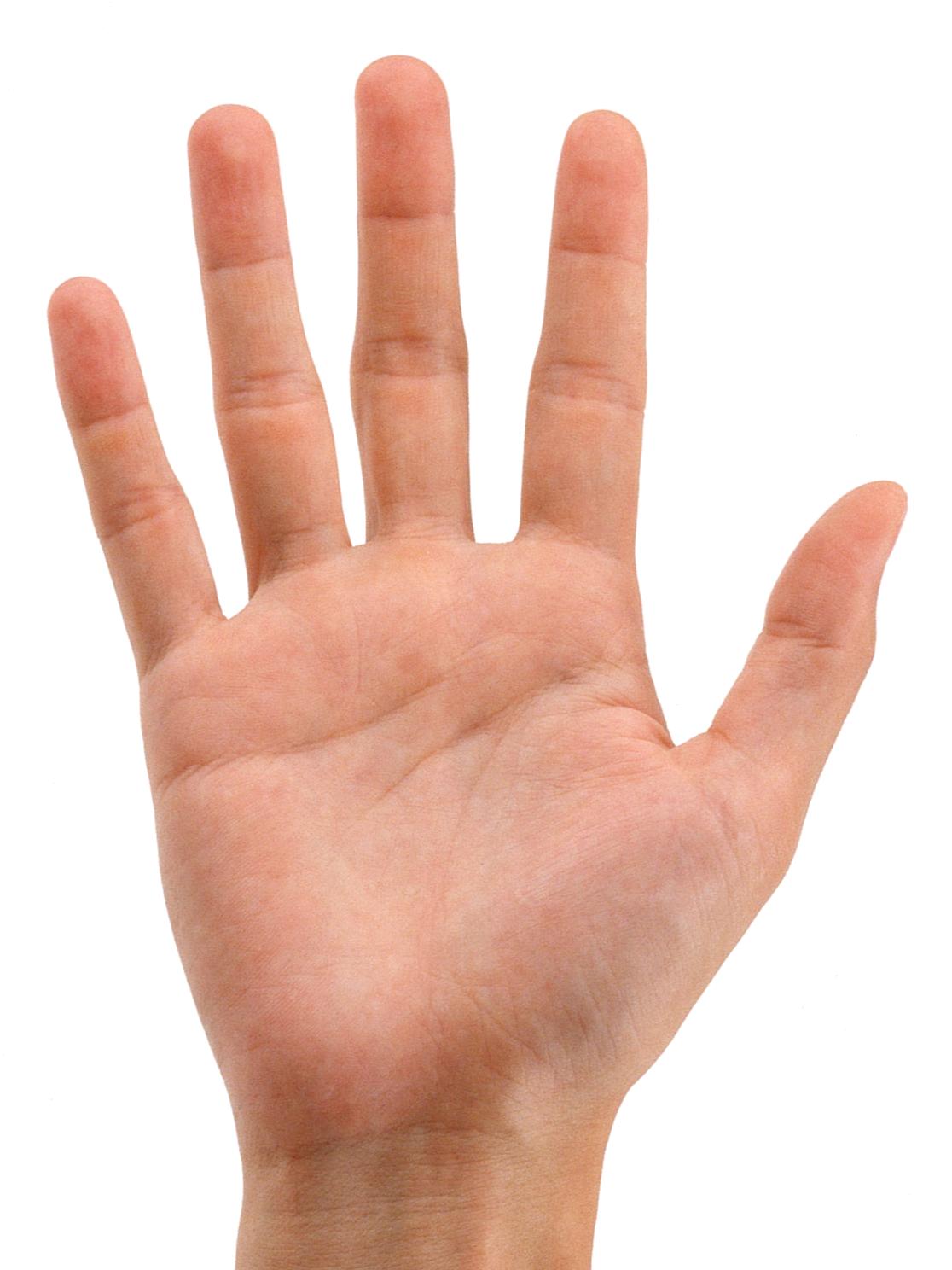 Hands PNG - 9962