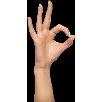 Hands PNG - 9960