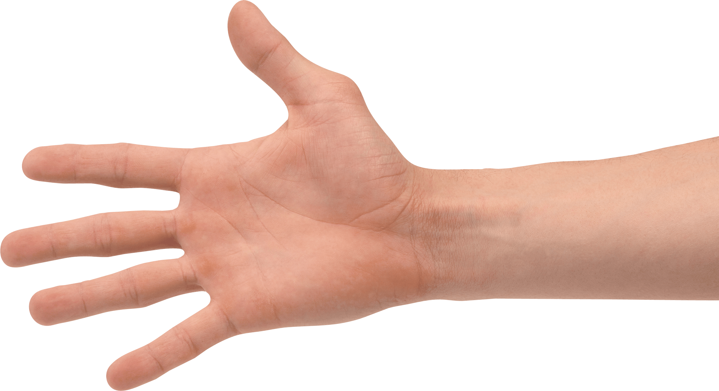 hands png transparent hands png images pluspng