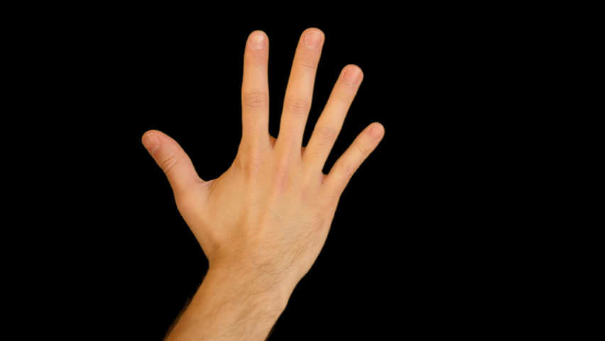 Hand Gestures - Counting On A Man Hand From 5 To 1. Quicktime PNG Alpha - Hands PNG HD